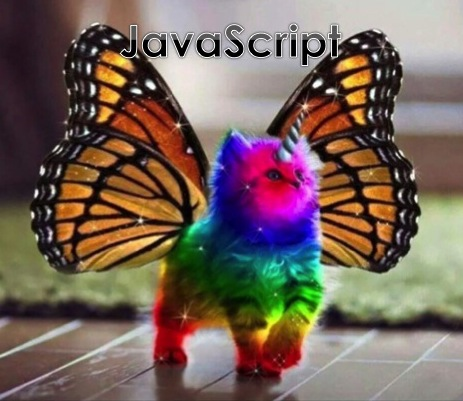 rainbow unicorn kitten