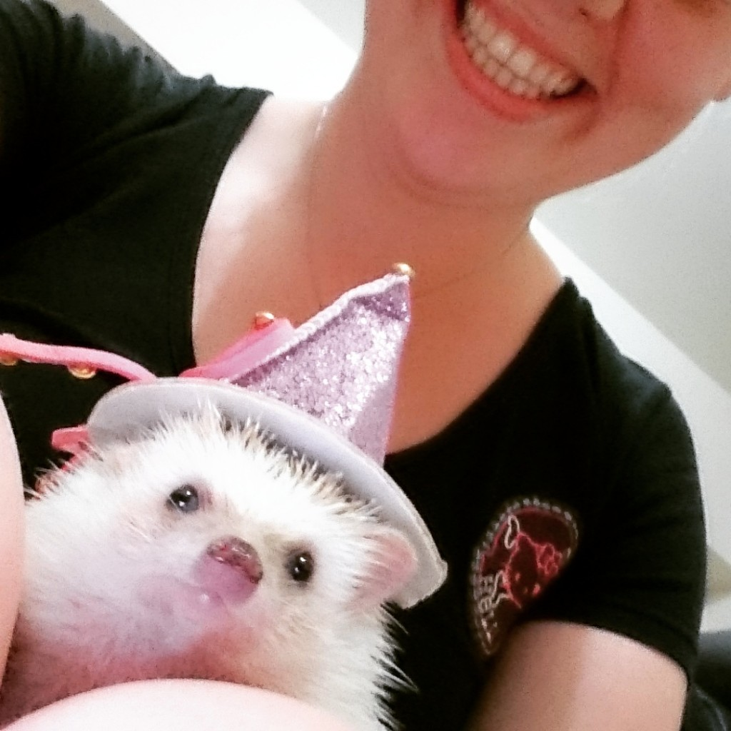 hedgehog dressed as a wizard