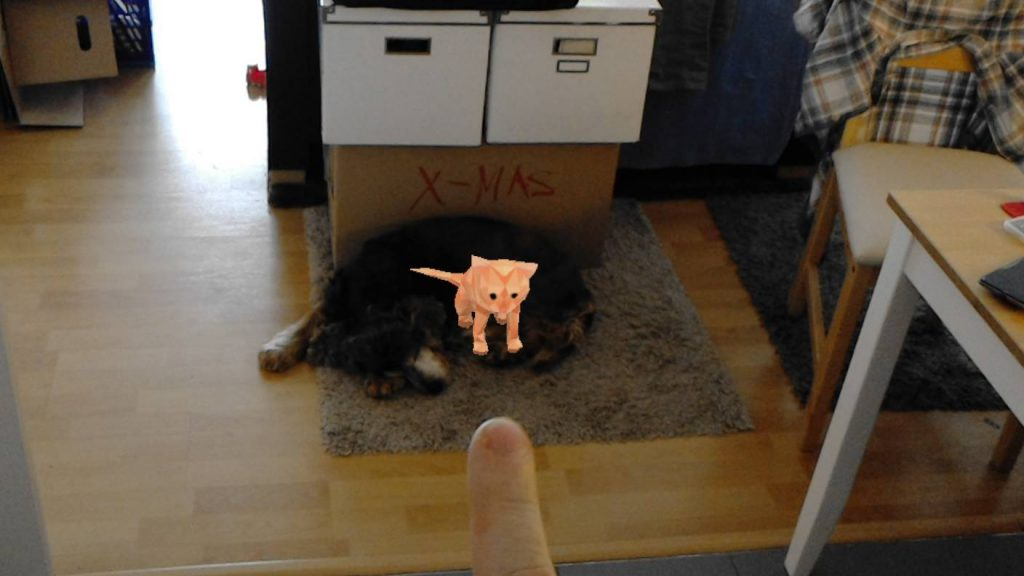 Putting cat Holograms on the dog