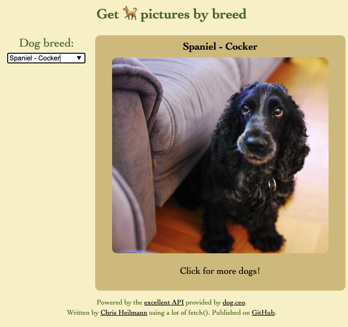 Dog browser Desktop version